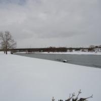 冬の石狩川河岸を遡る 22 後編