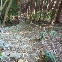 矢倉山、締めはラーメンで