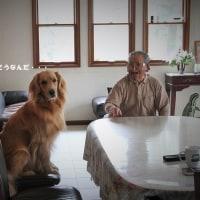 おじいちゃんと語る