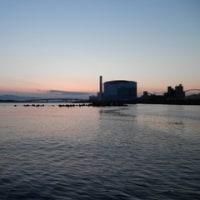 紀ノ川河口釣行