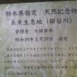 イトヨ生息地