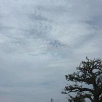 環水平アークと光環彩雲