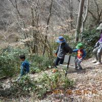 ウエルネスウオーキングは、青貝山~三椏コウゾウ」の花~を歩く。