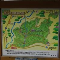 熊野古道伊勢路・通り峠