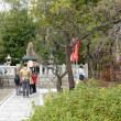 京都参戦の続き