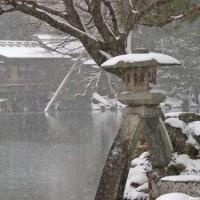 冬の金沢 その3 雪の兼六園①