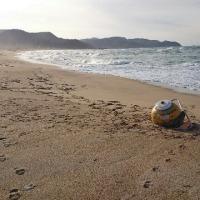 味宿きぬや 浜にUFO不時着!?