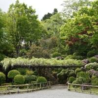 2017.5.14 富士仏舎利塔平和公園行ってきました~