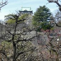 大阪城公園 (4)