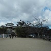 松山城でイカル