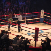 WBA世界ミドル級王座決定戦