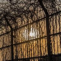 夕日の伊丹空港