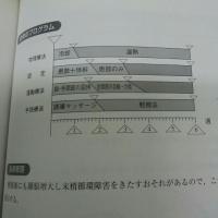 肘関節脱臼2