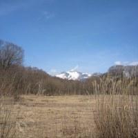 3/25(土)のPACニュース~追分&軽井沢周辺の情報