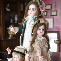 Doll Info