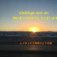 Gledilegt nytt ar 2017 謹賀新年!!