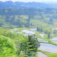 越後・・・頸城山地・・・日本一の美しすぎる・・・星峠の棚田・・・シリーズ(2)
