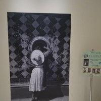 最終日「アルバレス・ブラボ写真展」静岡美術館 トロッキーやエイゼンシュテインに会える!
