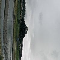 8月27日(土)浅川堤防道路-早朝散策