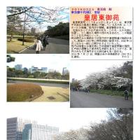 散策 「東京中心部南 242」 皇居東御苑