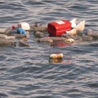 欧州、米国が海洋プラスチックごみ問題に取り組む