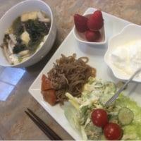4/18ワカメとトロロのスープ 糖質オフダイエットで使う食材