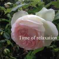 MUJIラベンダーのストールをふんわりと巻いたコーデ♪♪=春薔薇にワクワク☆彡=【通勤編】