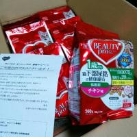 日本ペットフード ニャンバサダー