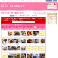 6/24(土)シロツメクサのドッグランと、365日カレンダー