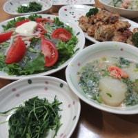 鶏挽肉と根菜の落とし揚げ