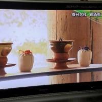 春日大社・献茶祭の今年の輪番は何千家?・・(^◇^)