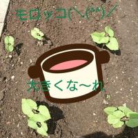 明るく❗笑顔で〜(-_-)