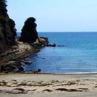 竜串~桜浜海水浴場