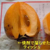 柿の渋はタンニン