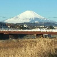 富士山が綺麗にみえています!
