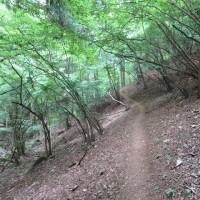 高畑山~倉岳山