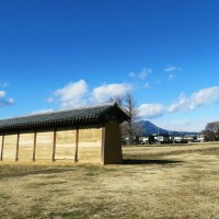 コマ回しに興じて、『庄八うどん』食べて、上野国国分寺跡に立ってました…