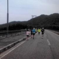 UP-DOWN厳しい関川マラソン、足は上がらず音を上げた