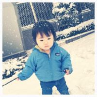 今日も雪〜!