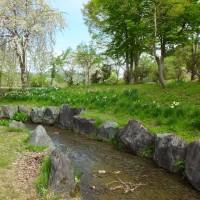 北国の春 銭淵公園:新潟県南魚沼市
