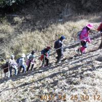 山歩きには絶好日和の今日、ウエルネスウォーキングは初谷川渓谷を歩いた。