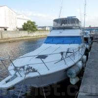 シーレイ 550DB(船ネット)