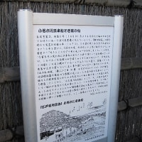 芭蕉史跡展望庭園 その3