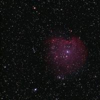 NGC2175 モンキー星雲