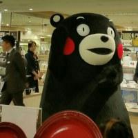 半年ぶりの熊本です。