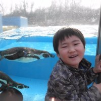 兄弟で動物園に行く