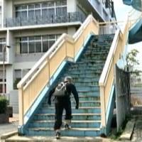 足腰の関節と筋肉、強く回復出来て、手すりを持たずに、2回目も、階段の上まで上がれました