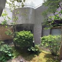 ストリートビュー 自慢の中庭