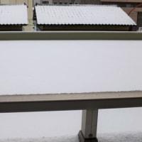 雪の季節になりました。(金沢市)