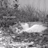 草のベッド